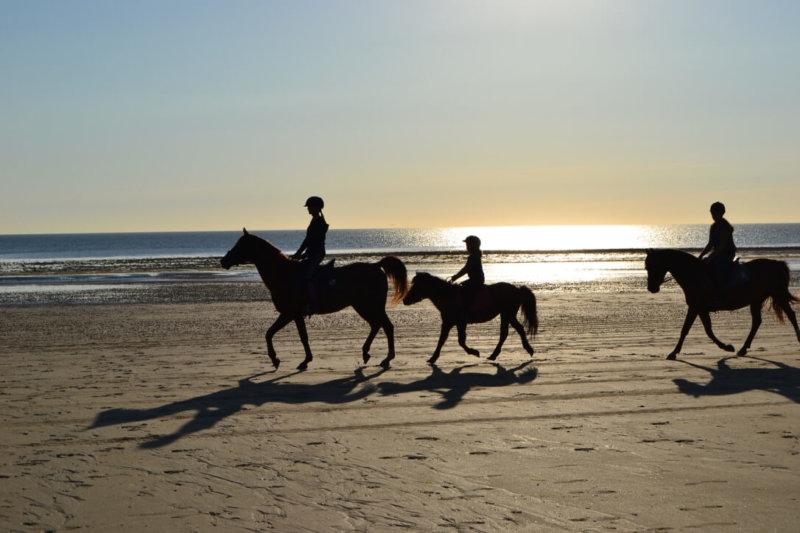 1 ère Course endurance Équestre