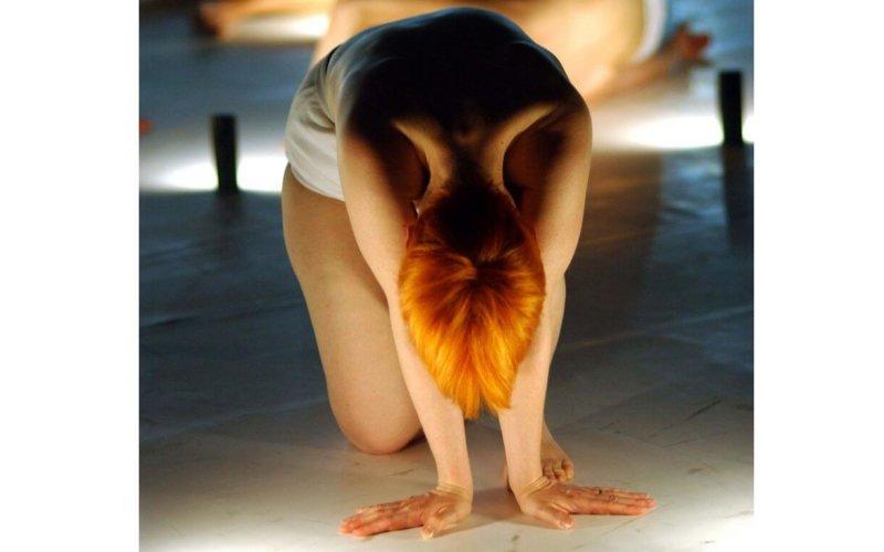 La danse contemporaine en question