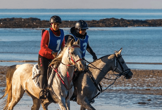 Course d'endurance équestre