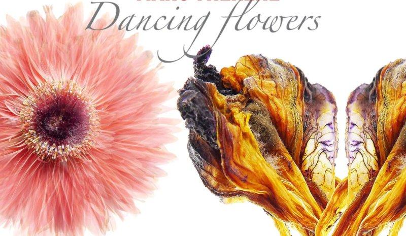 Marc Théréné / Dancing Flowers – Fleurs et Jardins imaginaires